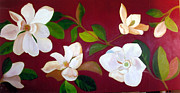 White Magnolias Posters - White Magnolias Poster by Darla Freeman