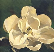Alfred Ng - white magnolias with green
