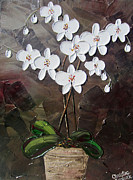 Artist Christine Krainock Framed Prints - White Orchid Flowers Framed Print by Christine Krainock