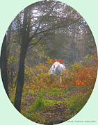 Colors Of Autumn Digital Art Prints - White Paso Fino Stallion Enjoys The Autumn Day Print by Patricia Keller