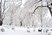 Winter Scenes Photos - White Peace by Emily Stauring