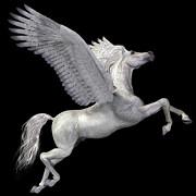 Corey Ford - White Pegasus Profile