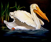 Migratory Bird Painting Framed Prints - White Pelican among the Reeds Framed Print by Phyllis Beiser