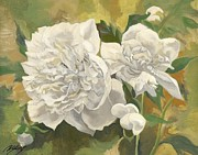 Alfred Ng - white peonies