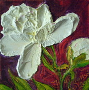 Paris Wyatt Llanso Prints - White Peony Print by Paris Wyatt Llanso