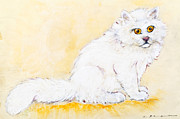 Persian Cat Pastels Posters - White Persian cat Poster by Kurt Tessmann