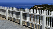 Cabrillo National Monument Posters - White Picket Fence Poster by Craig Carter