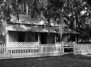 Florida House Prints - White Picket Fence Print by Mel Steinhauer