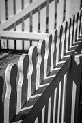 Black Lines Posters - White Picket Fence Portsmouth Poster by Edward Fielding