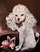 King James Framed Prints - White Poodle  Framed Print by Anna Sandhu Ray