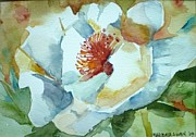Barbra Joan  - White Poppy