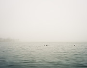 Minimal Landscape Framed Prints - White Rock Lake Fog Framed Print by Sonja Quintero