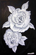 Featured Drawings - White Roses on black by Roberto Gagliardi
