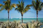 Best Ocean Photography Prints - White Sails. Mauritius Print by Jenny Rainbow
