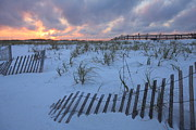 Pensacola Prints - White sand beaches at sunset in Pensacola Print by Jetson Nguyen