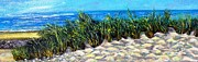 Rita Brown - White Sand on Sanibel...