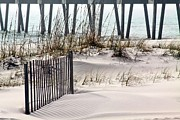Beach Fence Prints - White Sands of Pensacola Beach Print by JC Findley