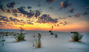 Allen Biedrzycki - White Sands Sunrise
