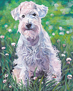 Schnauzer Puppy Framed Prints - White Schnauzer Framed Print by Lee Ann Shepard