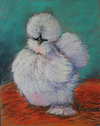 White Pastels Metal Prints - White Silkie Pullet Metal Print by Kate Owens