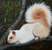 Sooke Originals - White Squirrel of Sooke by Alicia  Fowler