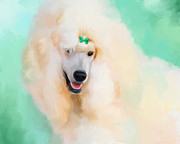 Standard Paintings - White Standard Poodle by Jai Johnson