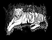 Alan Schwartz - White Tiger
