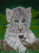 Mary M Collins - White Tiger Cub