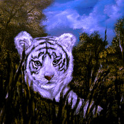 White Tiger Mixed Media - White Tiger Cub Sold by Cynthia Adams