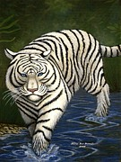 White Tiger Mixed Media - White Tiger by Karen Sue Powell