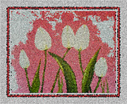 Painted Details Posters - White Tulips on Pink in Stained Glass Poster by Barbara Griffin