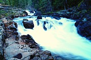 Falling Water Photos - White Water On The Ohanapecosh River  by Jeff  Swan