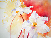 Anemones Paintings - White Windflowers by Ruth Harris