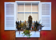 Red Cactus Flower Prints - White Window with Flower Box on a Red House Print by Bill Cannon
