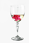 Wine Glasses Photos - White Wine by Marcia Colelli