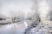 Snowy Stream Posters - White Winter Poster by Svetlana Sewell
