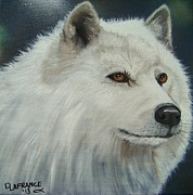 Canine Paintings - White Wolf by Debbie LaFrance
