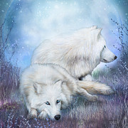 Carol Cavalaris Framed Prints - White Wolf Mates Framed Print by Carol Cavalaris