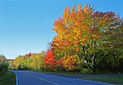 Reds Of Autumn Metal Prints - Whitefish Bay Scenic Byway Metal Print by James Rasmusson