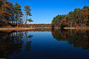 Concord Massachusetts Metal Prints - Whites Pond Metal Print by Corey Sheehan