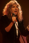 David Plastik - Whitesnake