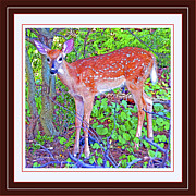 Whitetailed Deer Posters - Whitetailed Deer Fawn in a Forest  Poster by A Gurmankin