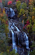 Whitewater Posters - Whitewater falls in autumn Poster by Jetson Nguyen