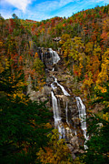 Outlook Prints - Whitewater Falls  NC II Print by Penny Lisowski