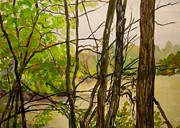 Indiana Landscapes Paintings - Whitewater Memorial State Park by Katrina West