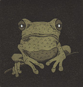 Tree Frog Reliefs Posters - Who you lookin at ? Poster by Suzette Broad
