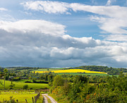 Rapeseed Photos - Wicklow Landscape by Semmick Photo