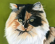 Cat Pastels - Wide Eyed by Sarah Dowson