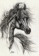 Horse Drawing Posters - Wieza Wiatrow polish arabian mare drawing Poster by Angel  Tarantella