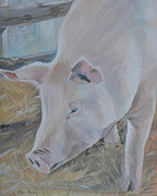 Charlotte Originals - Wilbur by Elena Broach